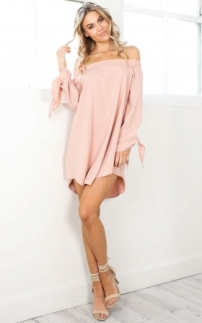 roll_away_dress_in_blushtn_1
